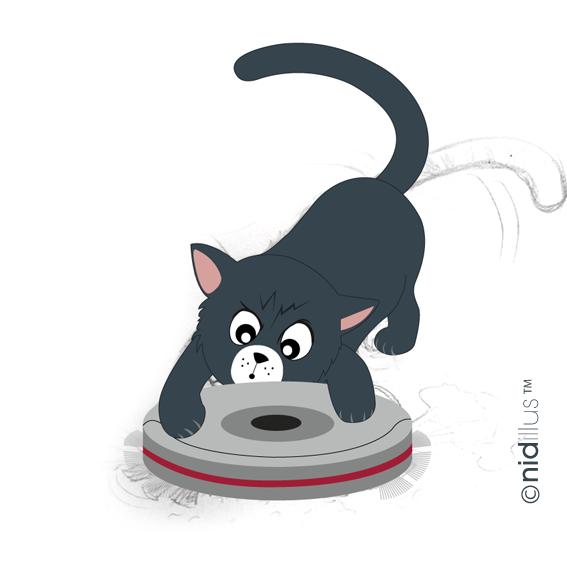 72nidillus-chat-spirateur-72-pour-video2