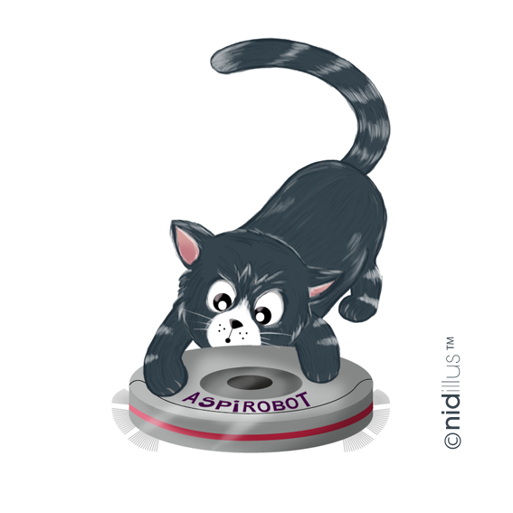 72nidillus-chat-spirateur-72-pour-video5.png