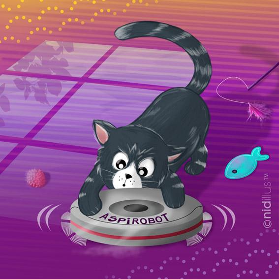 nidillus chat spirateur -72