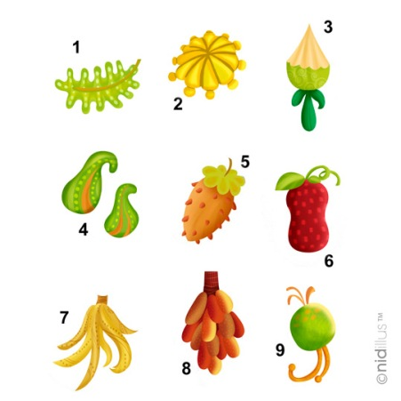 fruits nouveaux 72