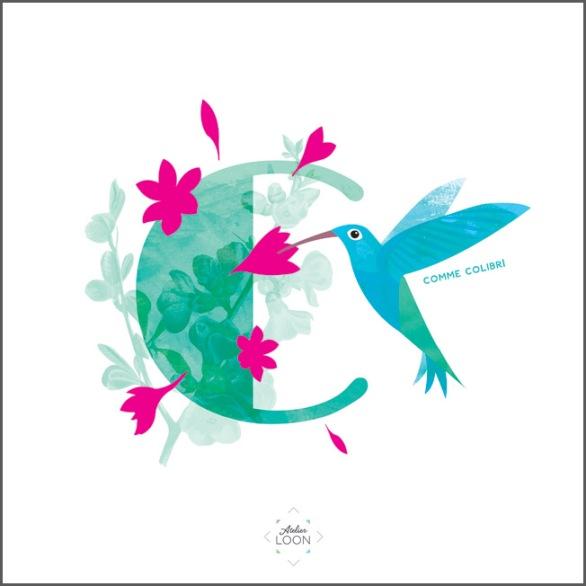 13-C-colibri lettre 72 atelier loon