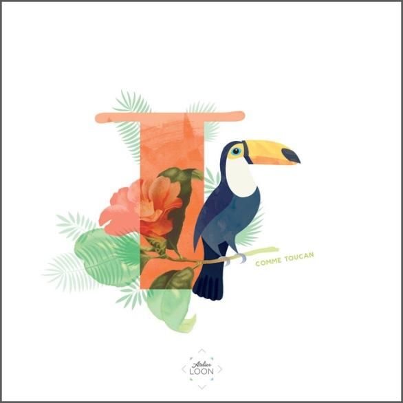15-T-toucan lettre 72 atelier loon